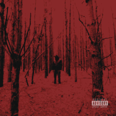 CRIMSON-..conception(LP)